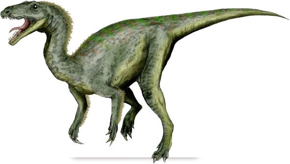 Gojirasaurus quayi