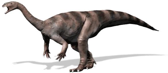 Atlascopcosaurus together with Bio Natur Urlaub Ferienwohnung Klettern Frankenjura Fraenkische Schweiz as well Got Yugyeom besides Molds Grande also Nishimoto. on letter n