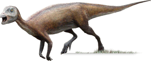 atlascopcosaurus.png