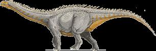 barapasaurus - photo #17