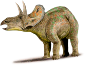nedoceratops.png
