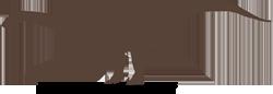riojasaurus-silhouette