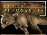 Sideshow Dinosauria, Museum quality fossil casts and dinosaur maquettes